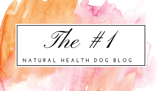 natural health for dogs